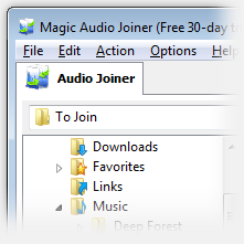 Magic Audio Joiner